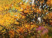 Beech Tree and Hoodies
