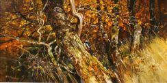 Autumn / Woodpecker