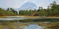 Loch Maree / osprey