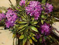 Wren & Rhododendrons