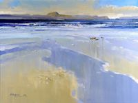 Mull from Iona - Redshanks