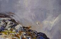 Fox and Ptarmigan 2
