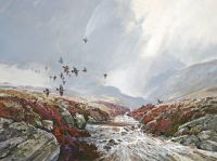 Red Grouse and Stag