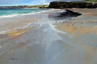 Hebridean Beach - Acrtic Terns