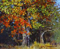 Autumn Roebuck