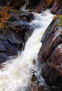Dipper & waterfall