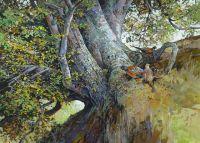 Pheasants and Beech Tree