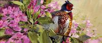 Pheasant and Rhododendrons